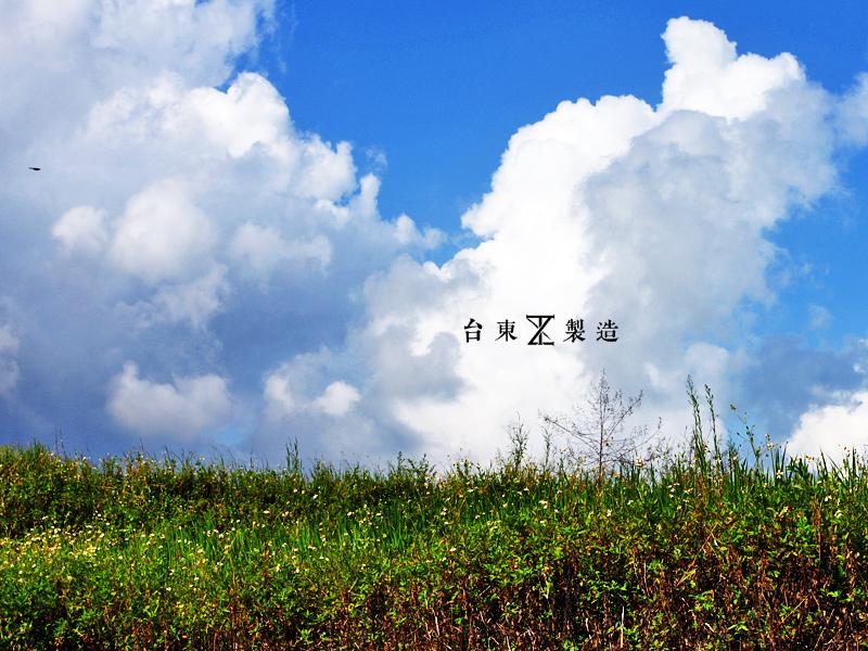 台東景點金剛大道25