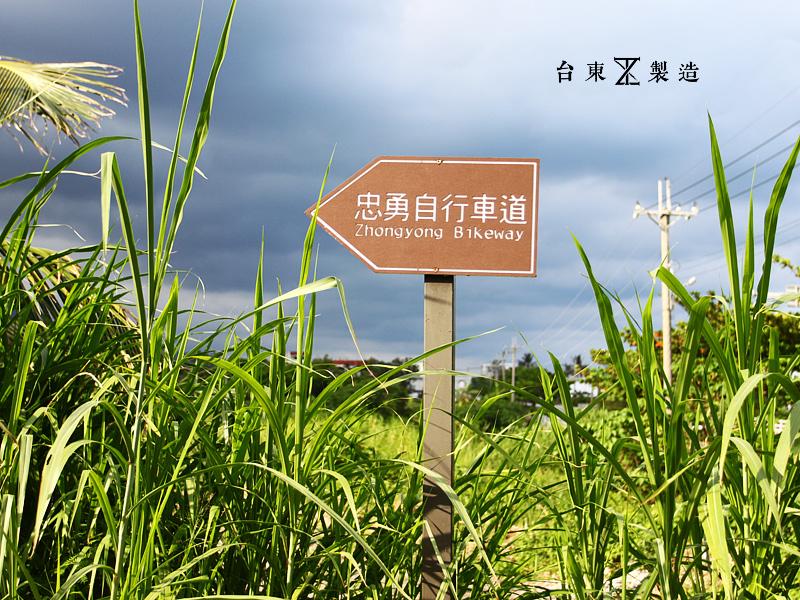 台東景點金剛大道5