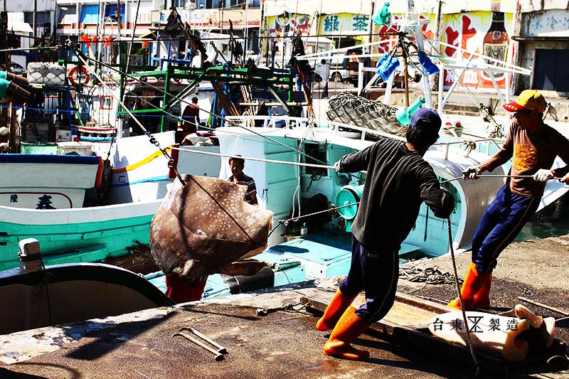 東海岸春節一日遊成功漁港 (27)