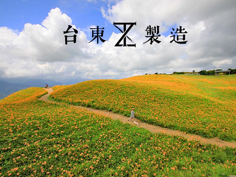 2016金針花季1-花蓮六十石山