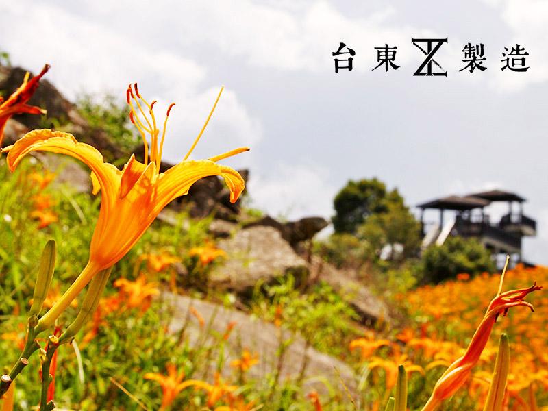 2016金針花季4-花蓮六十石山